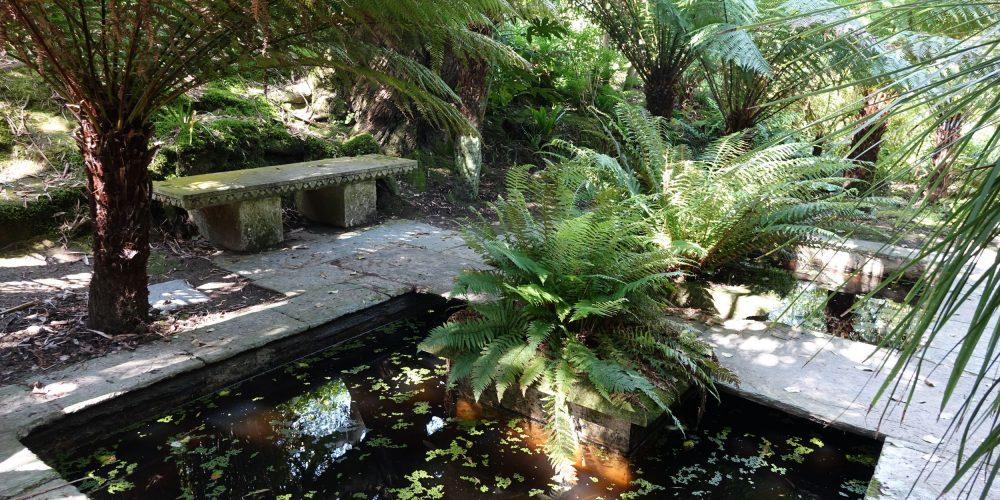 le Jardin botanique de Vauville: bassins ambiance japonaise.